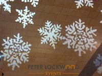 Snowflake Image Projection